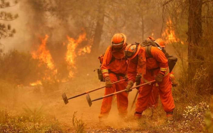 THE 'ANGELS IN ORANGE' FIGHTING CALIFORNIA'S FIRES